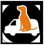 Taxi caní - Canvikings - Matadepera - Terrassa